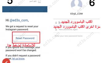 instagram-rest-password3