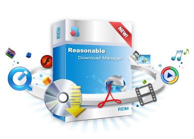 برنامج Reasonable Download Manager للتحميل من الانترنت